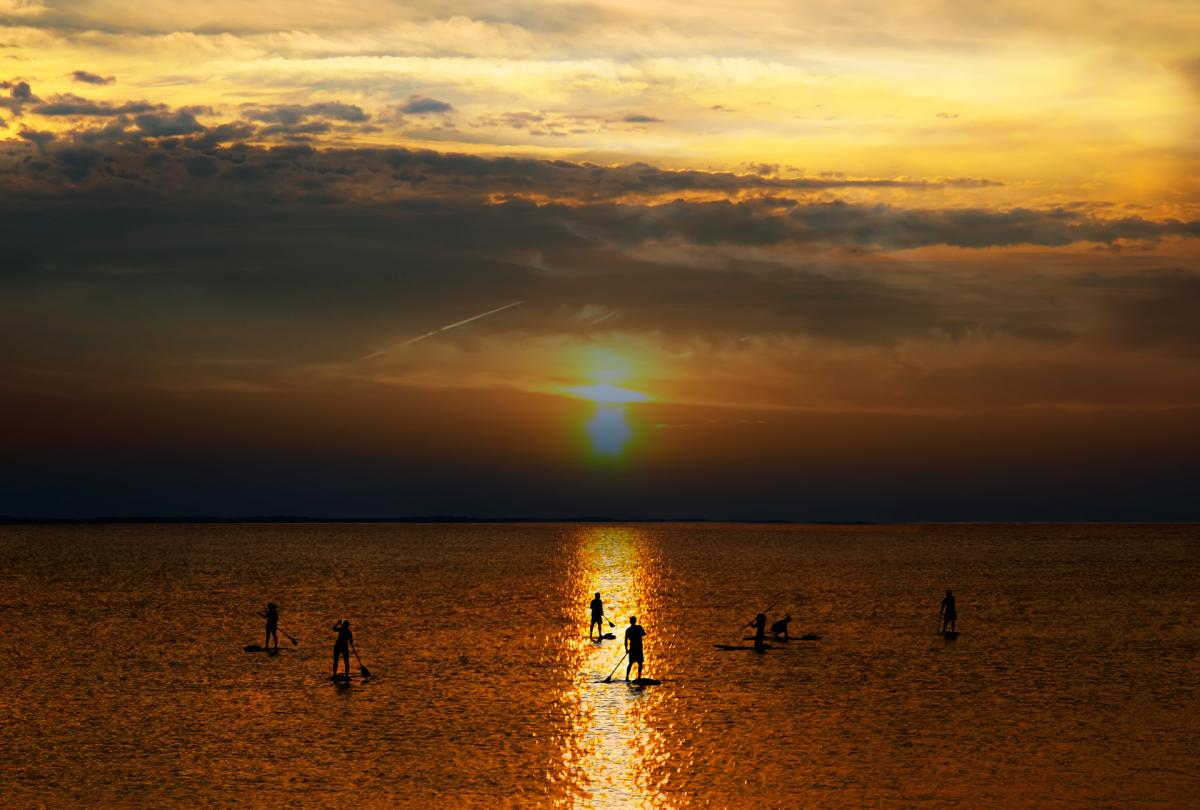 Stand-up paddlers at sunset